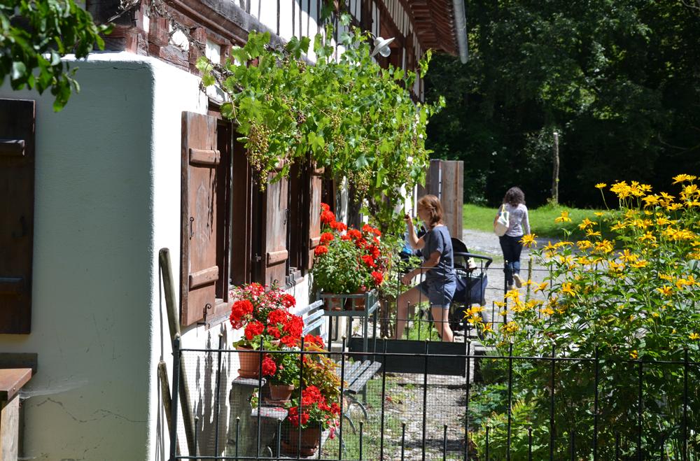 Bauernhausmuseum Wolfegg: Bauerngarten Hof Reisch